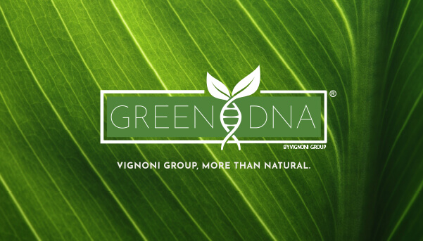 green dna vignoni